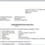 Contoh Surat Keterangan Asal Usul dari Kelurahan